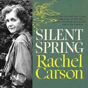 chapter com silent spring ldquo